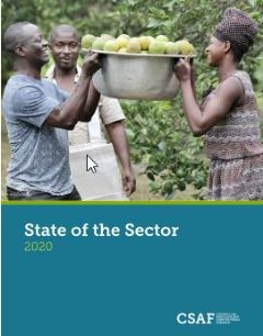 Afbeelding: Picture State of the Sector Report 2020 CSAF